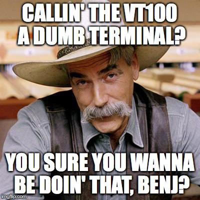 Callin' the VT100 a dumb terminal? You sure you wanna be doin' that, Benj?