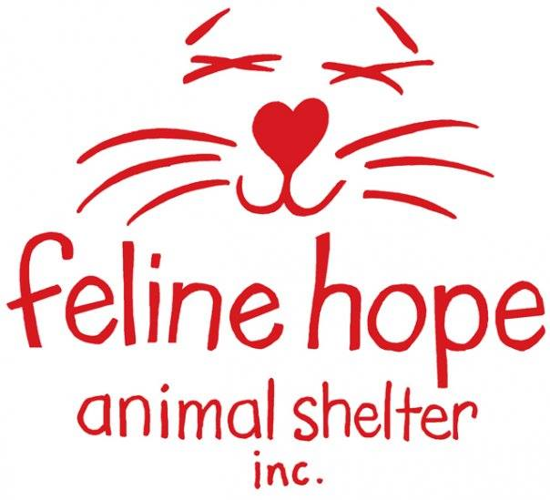 Feline Hope Animal Shelter