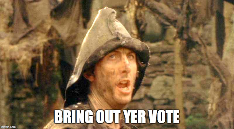 Bring out yer vote!
