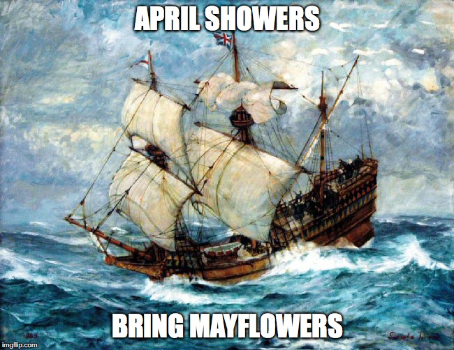 April Showers Bring Mayflowers
