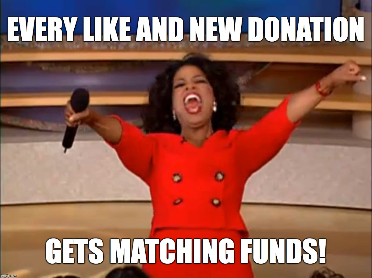 Every Like and new donation gets matching funds!